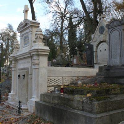Grobowiec O.O. Karmelitów na Cmentarzu Łyczakowskim, stan zachowania po konserwacji